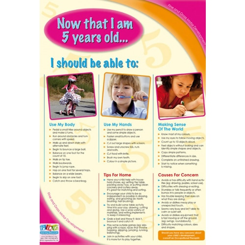 5 year old fine gross motor developmental milestones