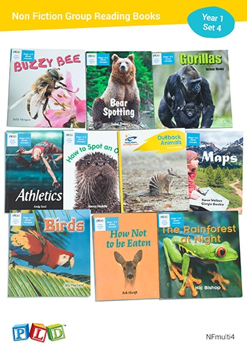 Non Fiction Group Reading Books Set 4 - Year 1 Semester 2